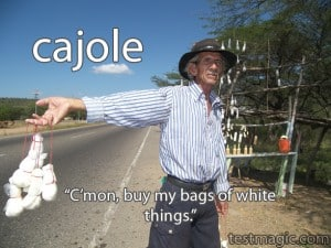 """Picture of a man selling white things to illustrate the vocabulary word """"cajole"""""""