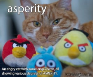 Angry cat with angry birds